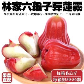 果農直配-六龜子彈蓮霧小顆1箱(50-56入/6kg/箱)