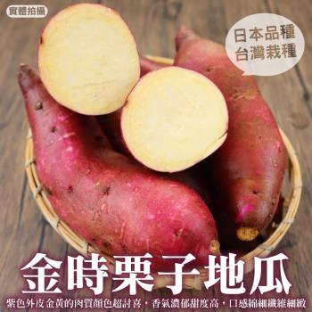 果農直配-日本品種生栗子地瓜(5斤±10%/含箱重)