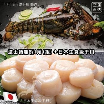 海肉管家-加拿大波士頓螯龍蝦(送日本生食4S干貝)