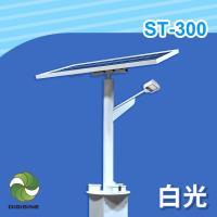 DIGISINE 太陽能智能路燈 - 12V系統/2000流明/白光 ST-300