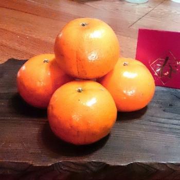 【綠安生活】吉園圃大湖茂谷蜜柑(25A)5斤(15-17粒)