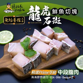 蘇班長安心石斑 龍虎石斑鮮魚切塊300g 3入組 歐盟食安標準 得獎最多的石斑(龍虎石斑 龍膽石斑 永安石斑)