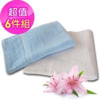 法式寢飾花季 優雅生活-純棉厚織舒柔毛巾被935g/條x6件組(白色)