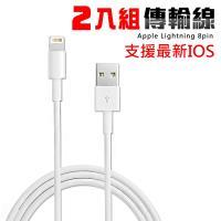 iPhone Lightning 新版USB傳輸線(2入)