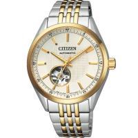 CITIZEN星辰 限量鏤空紳士機械錶(銀x金/40m) NH9114-81P