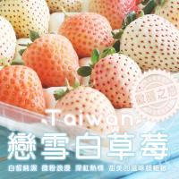築地一番鮮-台灣獨特-戀雪三色白草莓1箱(500G/箱)