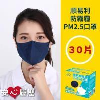 順易利 MIT 防霾PM2.5口罩 X2盒 (30入/盒)