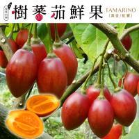 春霖山園 樹番茄鮮果-有機轉型期(1斤±10%/盒)  x20盒