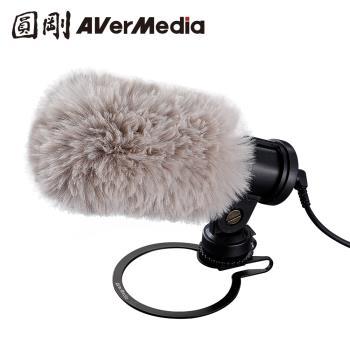 AVerMedia 圓剛 外接式收音麥克風 AM133