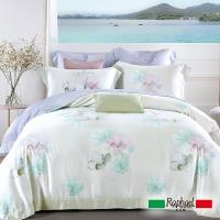 Raphael拉斐爾 芸芸 天絲雙人四件式床包兩用被套組