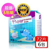 Huppy 哈比狗狗訓練尿布墊6包裝一箱 (58cm*58cm 72片/包)