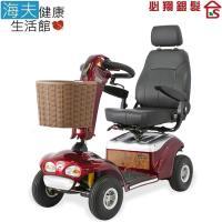 【海夫健康生活館】必翔 電動代步車 P型把手款(TE-888SLB)