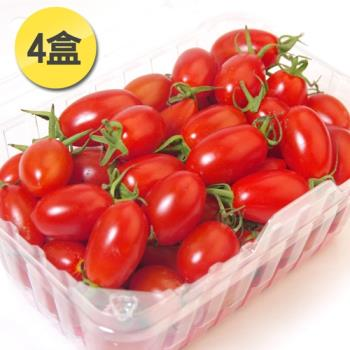 愛上水果 南投埔里特選頂級玉女小番茄4小盒*1組(約600g/盒)