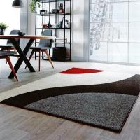 范登伯格 畢卡索比利時簡約風進口地毯-個性160x230cm