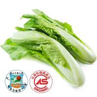 有機 蚵白菜 中興驗證 250公克±10