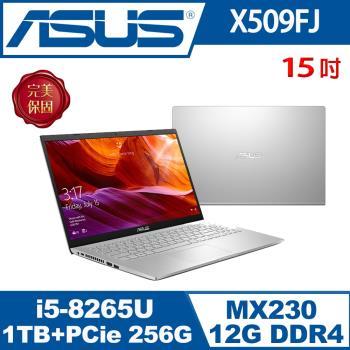 (改機升級)ASUS華碩 X509FJ-0131S8265U 輕薄筆電 冰河銀 15吋/i5-8265U/12G/1T+PCIe 256G SSD/MX230/W10