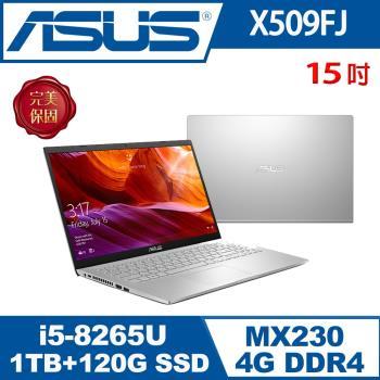(改機升級)ASUS華碩 X509FJ-0131S8265U 輕薄筆電 冰河銀 15吋/i5-8265U/4G/1T+120G SSD/MX230/W10
