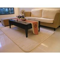 范登伯格-貝琪日本原裝進口防蹣抗菌地毯/地墊_140x200cm 米色