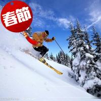 寒假春節-(不進人蔘)韓國滑雪樂天草泥馬水族館哈利波特米其林美食6日旅遊