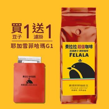 【費拉拉咖啡】耶加雪菲水洗 哈瑪合作社 G1 手沖咖啡 新鮮烘焙精品咖啡豆 一磅 (454G)
