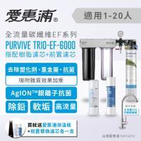 愛惠浦 壓力錶吊架型三道式淨水器 EVERPURE  PURVIVE-TRIO EF6000(贈保溫瓶+濾芯)