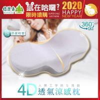 Beroso 倍麗森 日系人體工學弧度4D透氣涼感護頸回彈記憶枕-沉穩灰-2019-建議-聖誕禮物-交換禮物-實用-適用-送禮