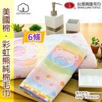 美國棉彩虹熊毛巾 (6條裝) 台灣興隆毛巾製