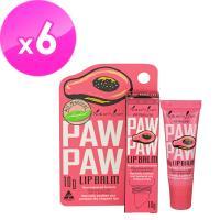 澳洲Natures Care Paw Paw 木瓜護唇膏含維他命Ex6入(10g/入)