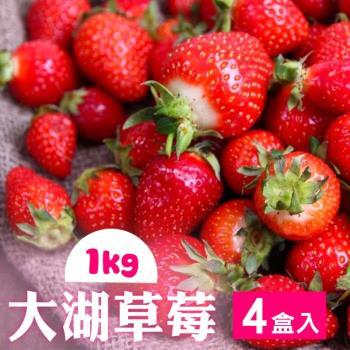 家購網嚴選-鮮豔欲滴大湖香水草莓1公斤/盒x4盒(2~3號果)