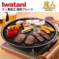 日本IWATANI岩谷 圓型烤肉盤/燒烤盤 CB-P-Y3