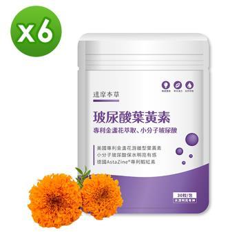 【達摩本草】玻尿酸游離型葉黃素《小分子玻尿酸、水潤明亮》x5包