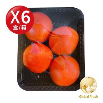 Global Fresh-力信國際 滿滿茄紅素牛番茄(500g/盒,6盒/箱)