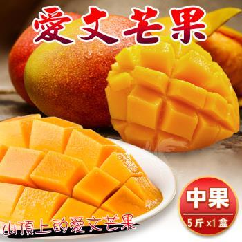 【禾鴻】產地直送枋山愛文芒果5斤8-12顆x1箱