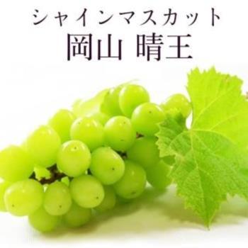 果物樂園-日本岡山晴王麝香葡萄1串(600g±10%含盒重)