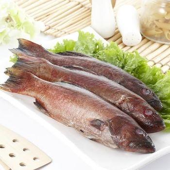 鮮味達人野生石斑魚美味超值組