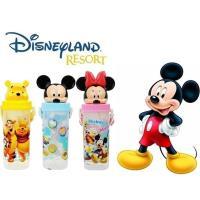 迪士尼家族 立體造型吸口水壺650mlx2入/米奇+米妮