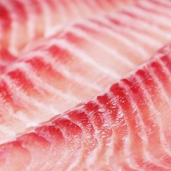 那魯灣 頂級生鮮鯛魚切片4包(5片/500克/包)