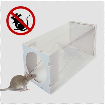 神捕 自動關鎖捕鼠瓶 人道捕鼠瓶 老鼠籠-4入