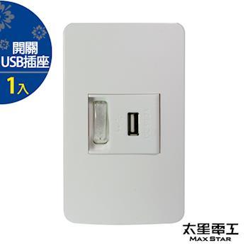 太星電工 聯蓋帶開關-USB單插座(1入) A414D