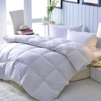 五星級飯店指定專用100%天然水鳥羽絨被組 1被2枕