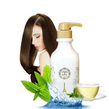 【愛戀花草】控油調理 綠茶草本洗髮精 500ML