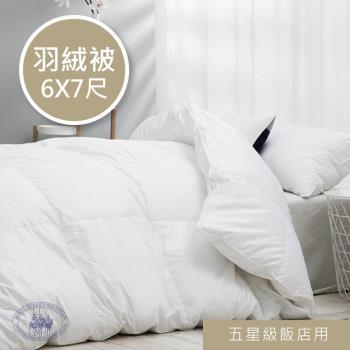 R.Q.POLO 五星級大飯店民宿 羽毛冬被 實絨實標 台灣製造 (6X7尺)