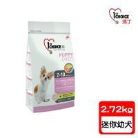 瑪丁1st Choice-迷你型幼犬  低過敏配方 羊肉+鯡魚+糙米  迷你顆粒(2.72公斤)