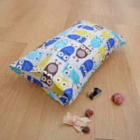 《Embrace英柏絲》精梳棉兒童小枕 27x45cm-藍色貓頭鷹 幼稚園午睡枕台灣製造 加贈日本花布布套