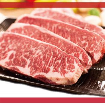【饗讚】美國Choice軟嫩霜降牛排16片組(100g/片)