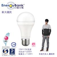 【日毓光電 新大國民系列】12W LED節能燈泡 4入(冷白光/暖黃光)