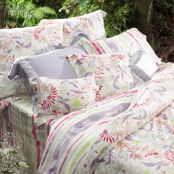 BBL 自由之心100%精梳棉.印花雙人四件式床包組