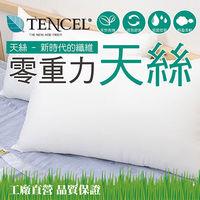 【Embrace英柏絲】透氣輕柔TENCEL天絲枕 奧地利進口原料 台灣製 42x72cm 枕頭