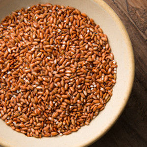 【富琳嚴選】農舞系列 紅米 原生種米無農藥種植(6包入)