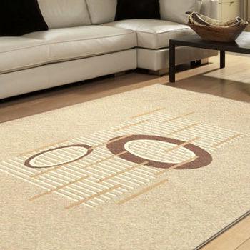 【范登伯格】珍奇自然簡約現代風格進口地毯(共兩色)160x230cm